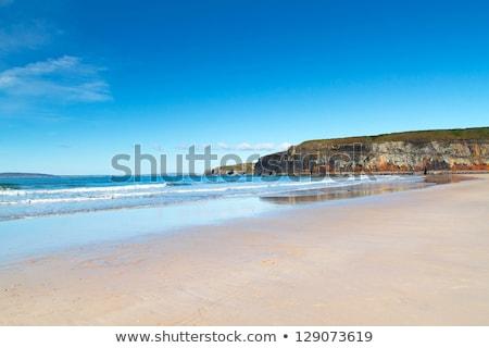 ビーチ · 海藻 · 表示 · アイルランド · 豊富 · 嵐 - ストックフォト © doomko