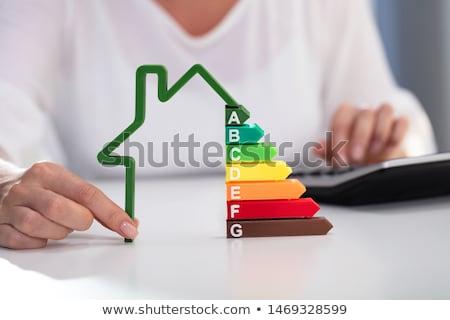 Stock fotó: üzletasszony · tart · ház · modell · energiahatékonyság · gyakoriság