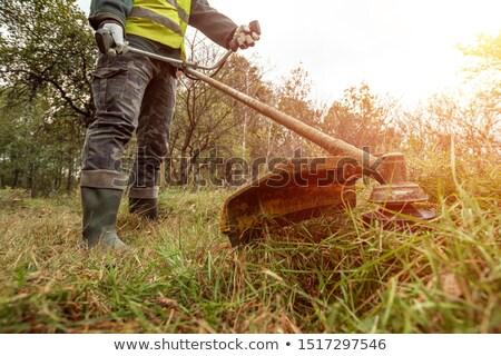 Jardinero manual arte pop retro dibujo Foto stock © rogistok