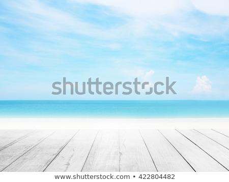 sandy beach background Stock photo © dolgachov