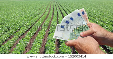Agricultural concept, farmer, money and soybean field harvest Stock photo © simazoran