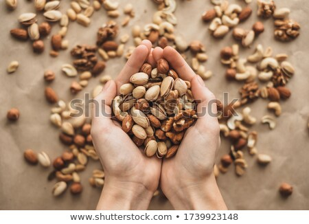 nuts and kernels Stock photo © val_th
