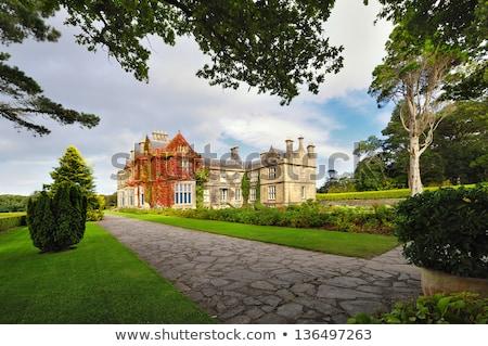 Ház Írország kettő fű kert zöld Stock fotó © borisb17