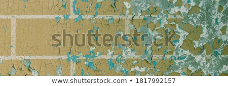 Old weathered wall with peeling paint Stock photo © boggy