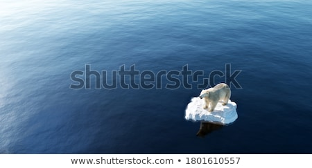 Iklim değişikliği buzdağı buzul arktik doğa manzara Stok fotoğraf © Maridav