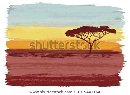 ツリー · 日の出 · 美しい · アフリカ · 湖 · 自然 - ストックフォト © searagen