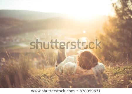 空想 草 図 草で覆われた フィールド 夏 ストックフォト © iqoncept