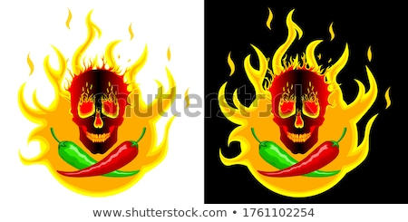 Spicy Cooking Stock photo © Lightsource