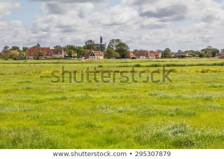 голландский деревне Windmill фермы домах пейзаж Сток-фото © ivonnewierink