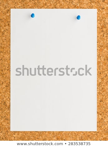 Clipboard and A4 white paper  stock photo © hin255