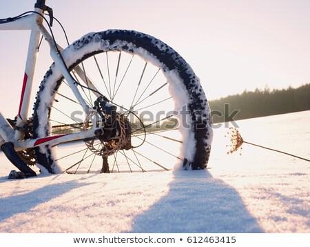 sneeuw · rechtdoor · laat · avond - stockfoto © olandsfokus