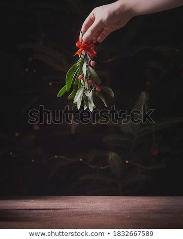 ökseotu karpuzu avrupa sığ yaprak açık Stok fotoğraf © SRNR