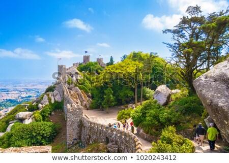 Pared ciudad fortificación medieval barrio antiguo edificio Foto stock © rognar