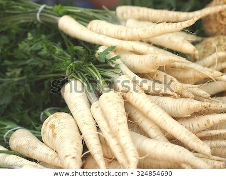 Persil root fond blanche Photo stock © Klinker