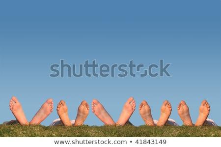 sok · lábak · fű · kollázs · tavasz · nők - stock fotó © Paha_L