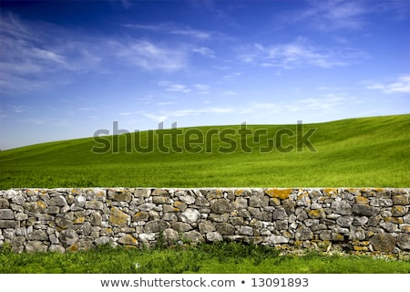 old ruin wall with blue sky Stock photo © compuinfoto