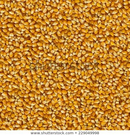 karamell · pattogatott · kukorica · közelkép · fehér · tál · étel - stock fotó © popaukropa