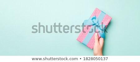 Mädchen halten Geschenk Geburtstag Porträt cute Stock foto © IS2