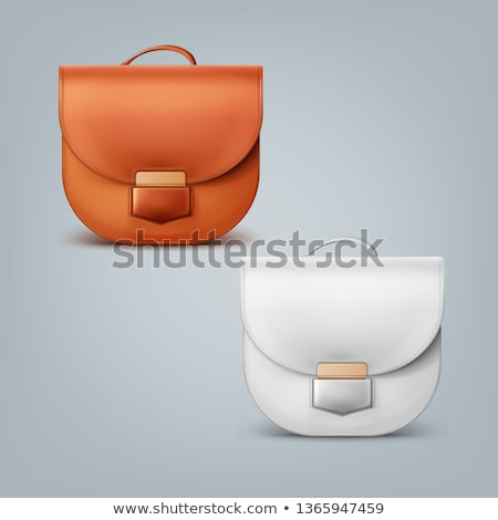 In front elegant gray female clutch bag Stock photo © Cipariss