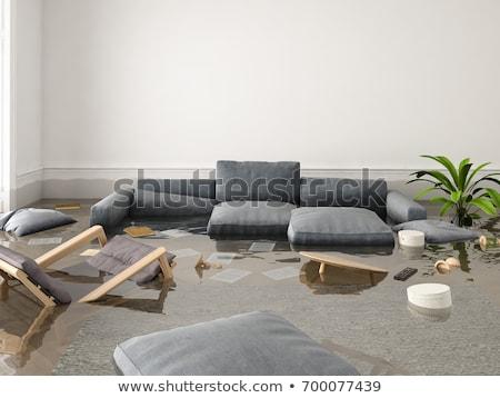Casa grietas 3d blanco 3D ilustración Foto stock © make