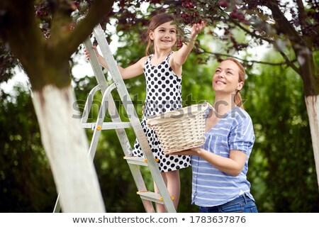 Sevimli kız kiraz anne bahçe Stok fotoğraf © AndreyPopov