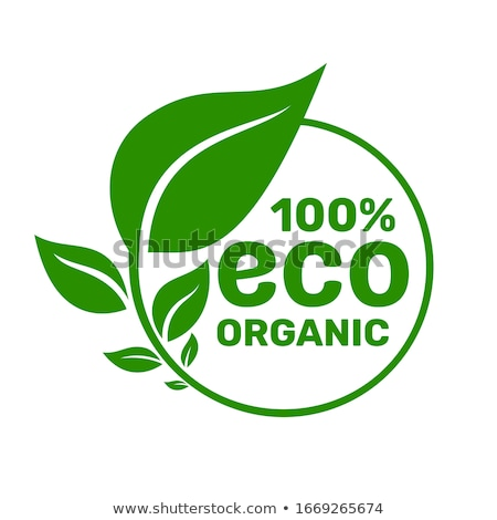 healthy symbol organic product eco logo vector stock photo © robuart