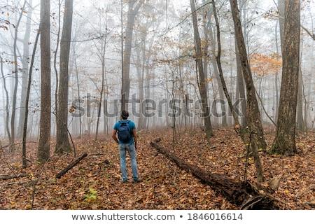 Reiziger naar bos vrouwelijke genieten mistig Stockfoto © iko