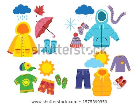 Rain cap. Isolated icon. Fall clothing vector illustration Stock photo © Imaagio