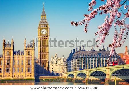 Wiosną Londyn westminster domów parlament budynku Zdjęcia stock © johnnychaos