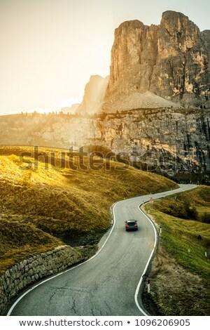 winding road on dolomites stock photo © antonio-s