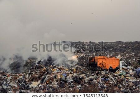 Waste Disposal Dump and Birds Stock photo © fouroaks