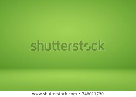 Green Studio Background Stock photo © timurock