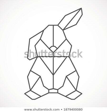 Pascua lineal estilo banner forma Foto stock © Olena