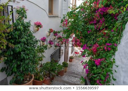 Színes házak keskeny utca Spanyolország hölgy Stock fotó © smartin69