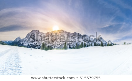 winter morning in snowy mountains landscape stock photo © taiga