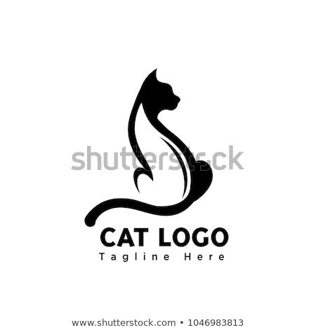Vektor rajz elegáns macska női modell Stock fotó © netkov1