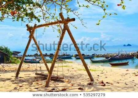 Balançar palmeira praia ilha Foto stock © AndreyPopov