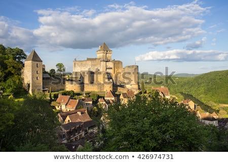 Chateau de Beynac, France Stock photo © borisb17