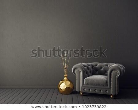 Lüks koltuk klasik ahşap sandalye yalıtılmış beyaz Stok fotoğraf © Bumerizz