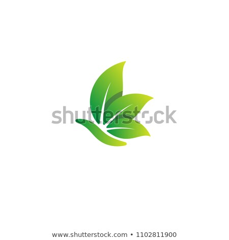 Abstract snail with green leaves- logo concept Stock photo © shawlinmohd