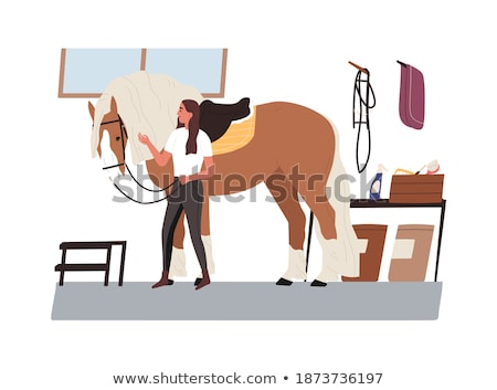 Horsewoman Stock photo © adrenalina