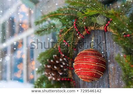 christmas · krans · houten · deur · handgemaakt · winter - stockfoto © digifoodstock
