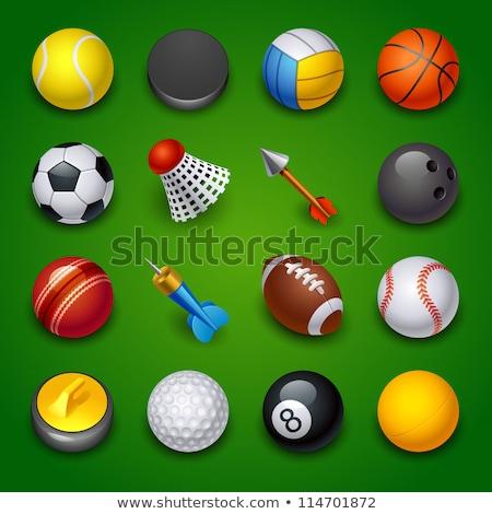 Sport icon design for cricket Stock photo © bluering