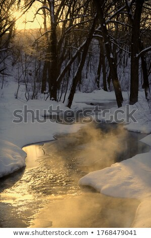 Icy river Stock photo © ldambies