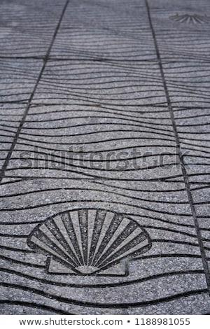 полу морем оболочки знак острове Сток-фото © lunamarina