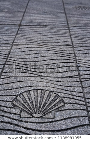 floor sea shell sign in la toja island of pontevedra stock photo © lunamarina