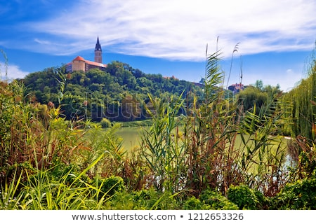 Town of Ilok church on the hill above lake Stock photo © xbrchx
