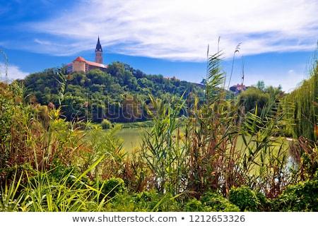 Town of Ilok church on the hill above lake stock photo © xbrchx