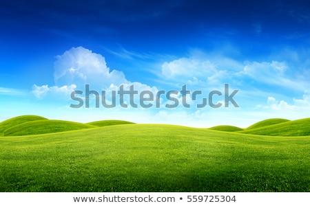 Yeşil alan manzara fotoğraf mavi gökyüzü kabarık Stok fotoğraf © ajn