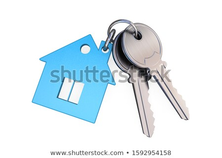 isolated two keys on white background 3d image stock photo © iserg